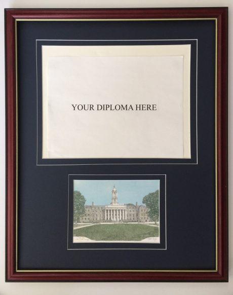 martin barry diploma